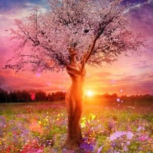 lilith tree