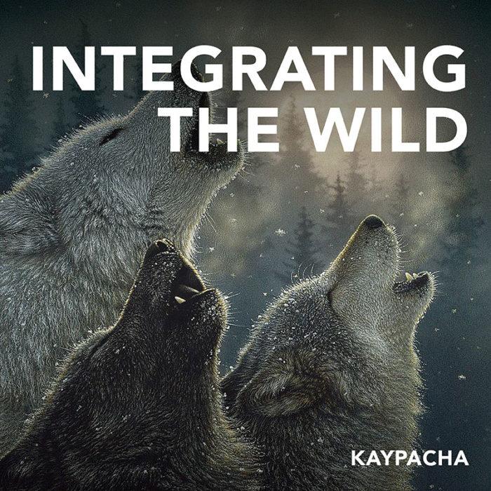 Integrating the Wild